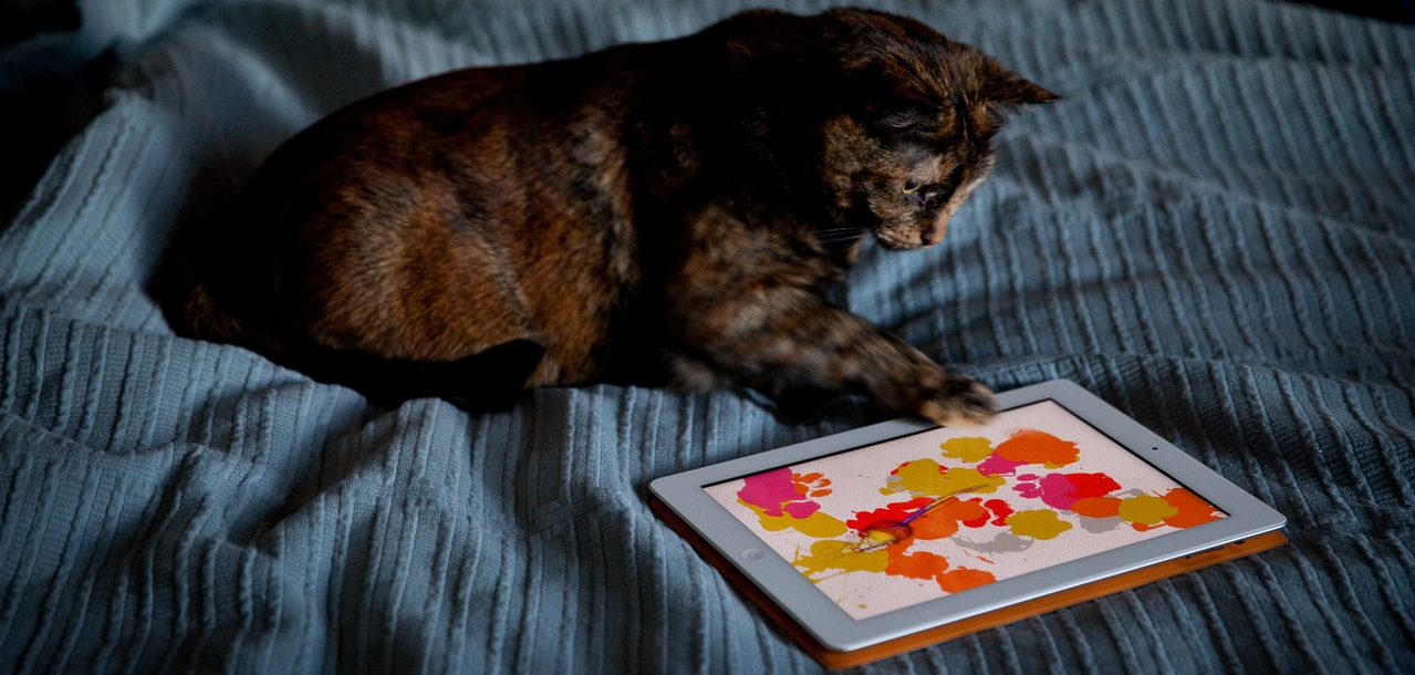Application tactile multitouch jeu animaux