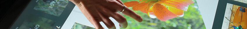 borne tactile PMR adaptée aux personnes à mobilité réduite