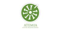 atemia-developpement-museographie-numerique