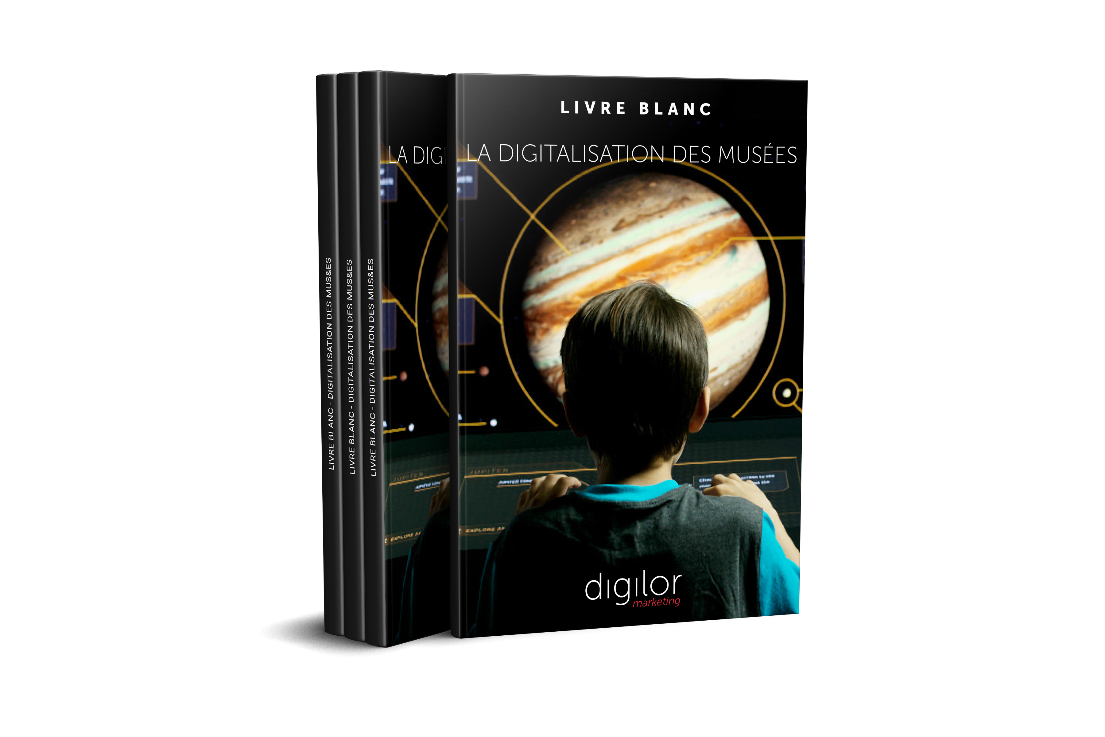 Livre blanc digitalisation musées 3D