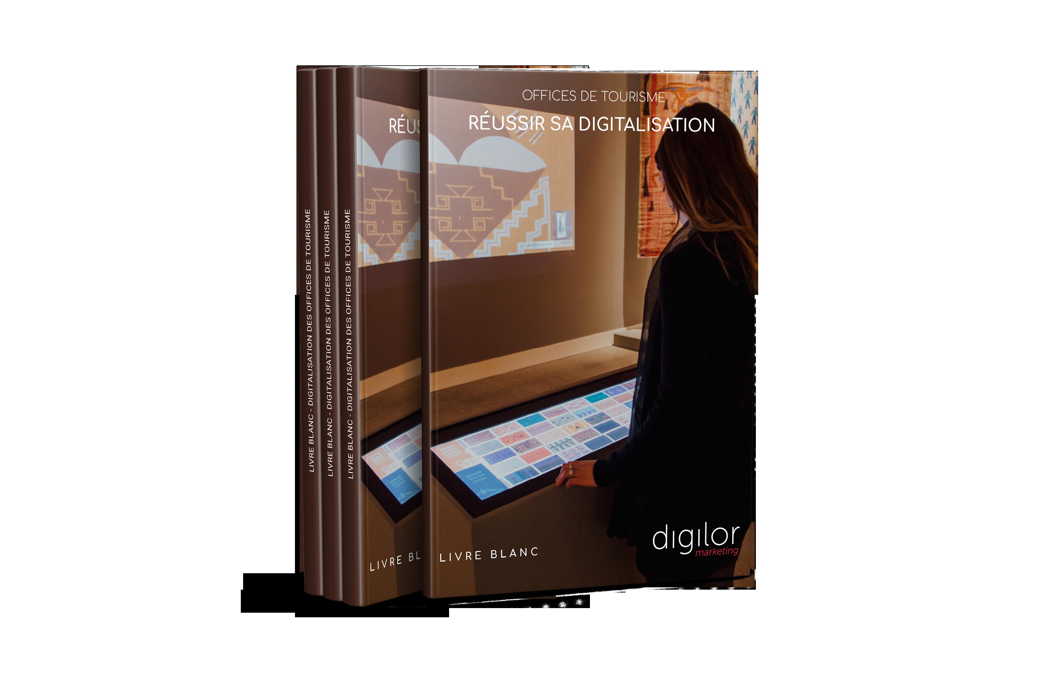 Livre blanc digitalisation offices de tourisme 3D
