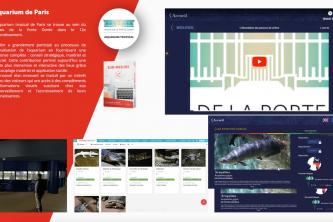 Application tactile présentation entreprise projet