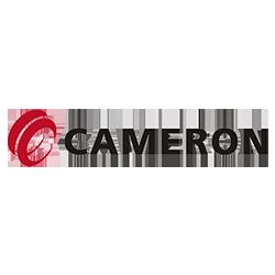 Cameron étude de cas digitalisation