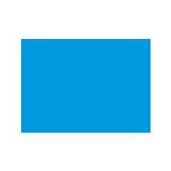 Mairie Thonon étude de cas digitalisation