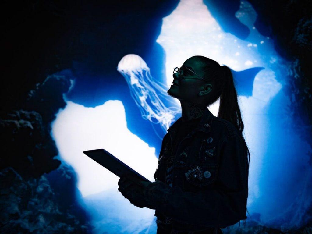 Arcadia Earth expérience immersive outils numériques