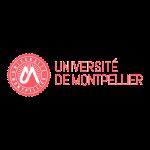 Digitalisation université de Montpellier